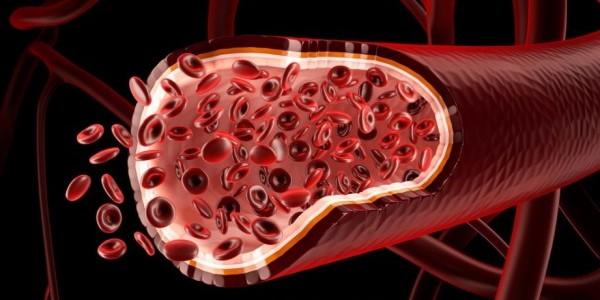 Empiezan a construir vasos sanguíneos usando impresión 3D