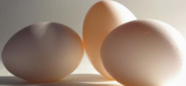 Razón matemática de que los huevos se vendan por docenas