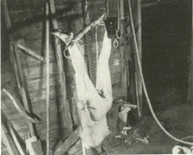 Foto de su última víctima desde otro ángulo (Bernice Worden) tomada por la policia en el momento de la inspección de su domicilio, el cadaver se encontraba decapitado y con el cuerpo completamente abierto en canal.