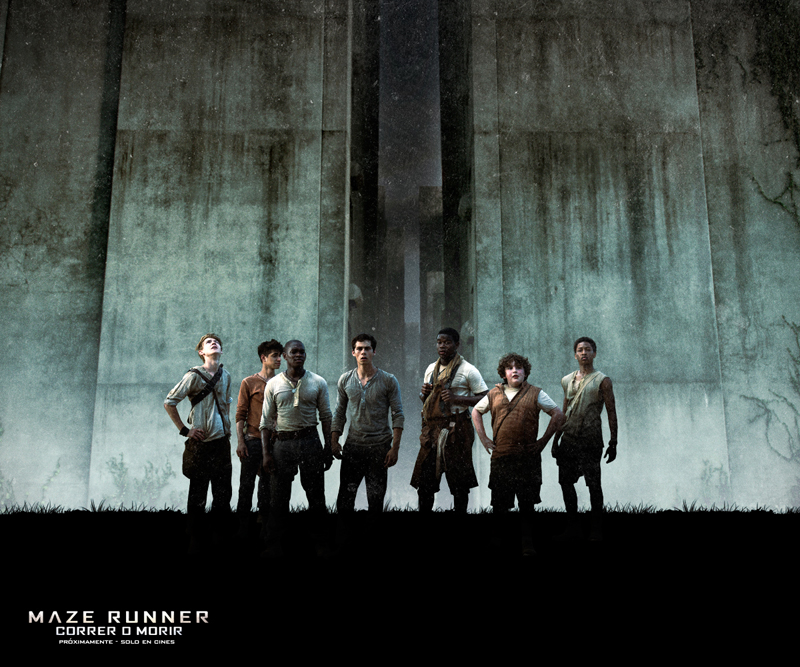 "Plicula ""the maze runner"" decine para LN"