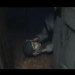 Silent Hills – Tráiler TGS 2014