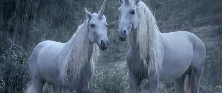Razón de por que los unicornios no existen
