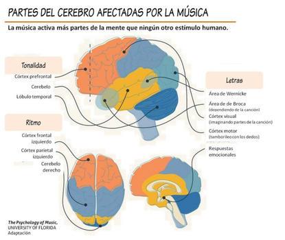 Cerebro-y-musica-1_large
