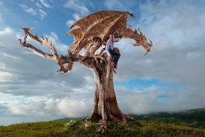 dragones_madera_02