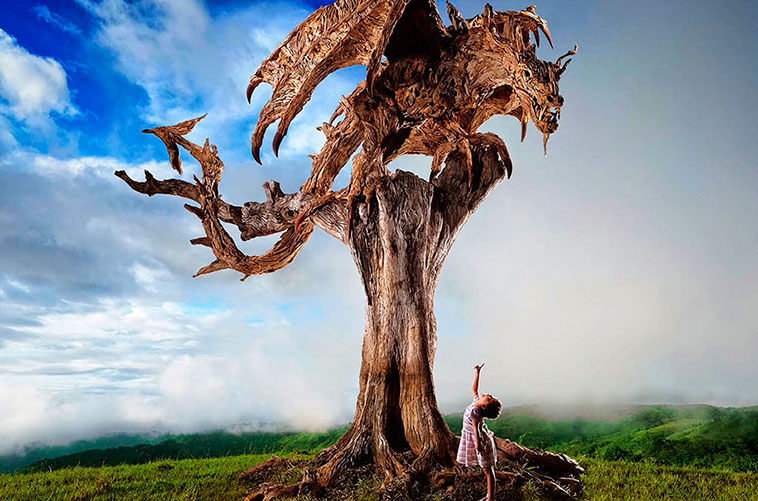 dragones_madera_05