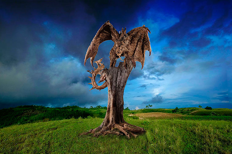 dragones_madera_08