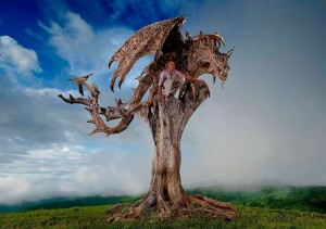 dragones_madera_09