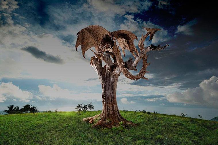 dragones_madera_11
