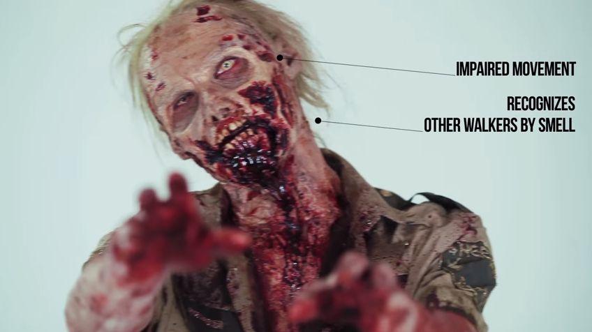 La increíble evolución de los zombies en los últimos 100