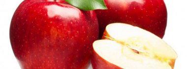 Seguridad alimentaria de los alimentos transgénicos